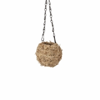 Blonde Small Kokedama Hanging Planter