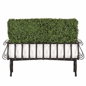 Boxwood Hedge in European PVC-Lined Iron Planter