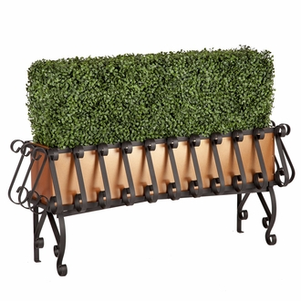 Boxwood Hedge in Metal-Lined European Iron Planter