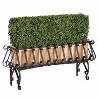 Boxwood Hedge in Redwood and Iron Planter