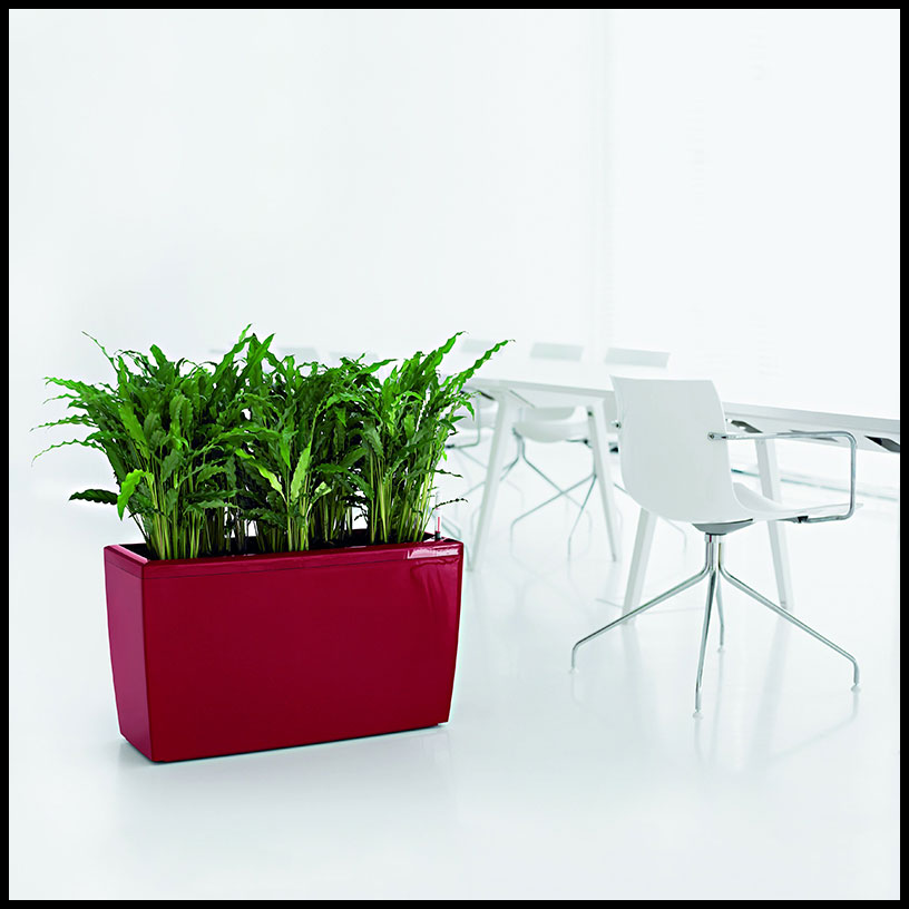 indoors for watering cardiff hooks well lattice self planters planter office