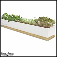 Certified Organic Micro-greens Grow Box - Veggies