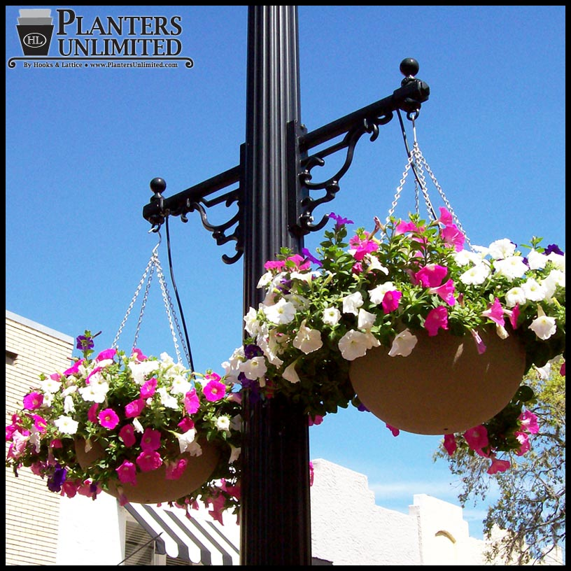 Pictures Of Large Hanging Flower Baskets : Commercial hanging baskets large flower