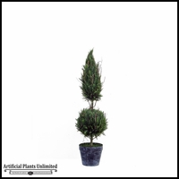 5' Cone Ball Italian Cypress In Tin Pot