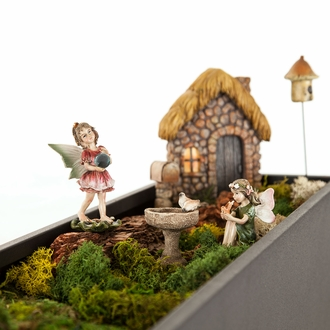 Country Garden Fairy Garden Kit