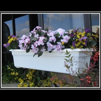 Countryside Window Box Liners 36""