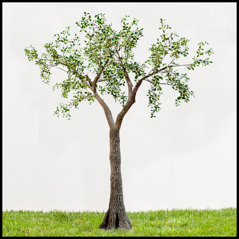 artificial oak tree, large outdoor artificial trees Artificial Outdoor Trees