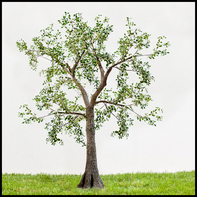 Custom Outdoor Artificial Oak Tree Click To Enlarge