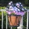 Decora Style Flower Pot Holders
