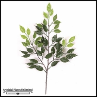2' Outdoor Rated Ficus Branch