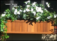 Discontinued Window Boxes
