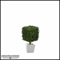33in.H Duraleaf Boxwood Topiary Cube Tree in Custom Fiberglass Planter, Indoor Rated