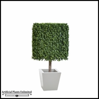 51in.H Duraleaf Boxwood Topiary Cube Tree in Custom Fiberglass Planter, Indoor Rated