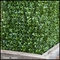Duraleaf Boxwood Outdoor Artificial Hedge 48inLx 12inW