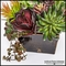 Echeveria and Money Plant in Rustic Wood Planter 7inLx7inWx20inH