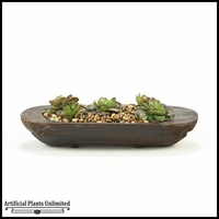 18in. Echeveria in Oblong Wooden Planter