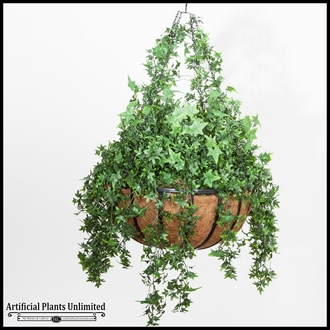 English Ivy in 22in Hanging Basket, Outdoor Rated