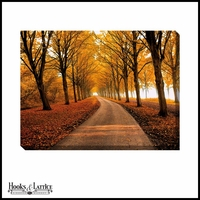Fall Colors Winding Pathway - Canvas Artwork