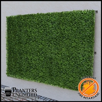 Boxwood Fire Retardant Artificial Living Wall 96in.L x 48in.H