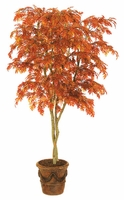 Fire Retardant Oak and Willow Trees
