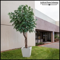 Fire Retardant Pin Oak with Natural Trunk