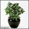 18in. Flowerless Azalea Bush, Indoor Artificial