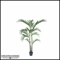 6', 7.5', 8.5' or 10' Giant Areca Palm Tree
