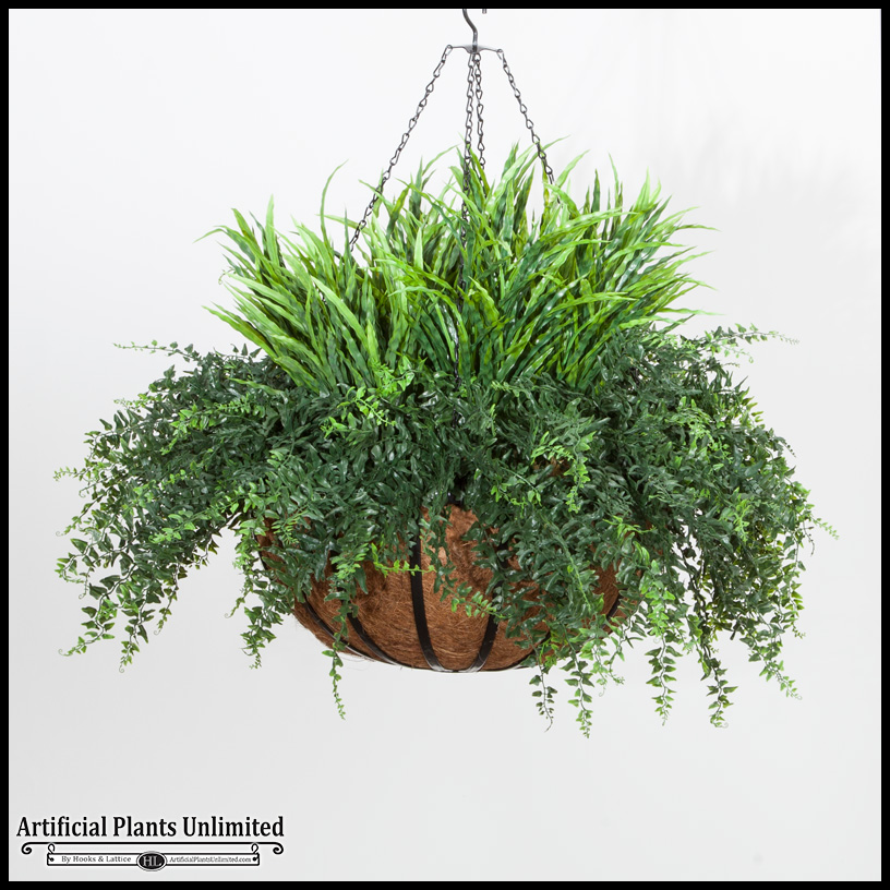 Fern In 22in Hanging Basket Outdoor Rated Click To Enlarge