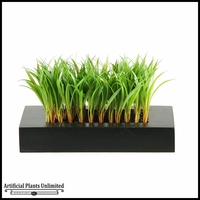 Grass in Wooden Tray, 8 in.