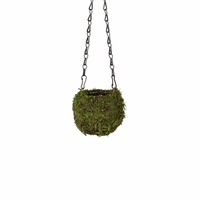 Green Small Kokedama Hanging Planter