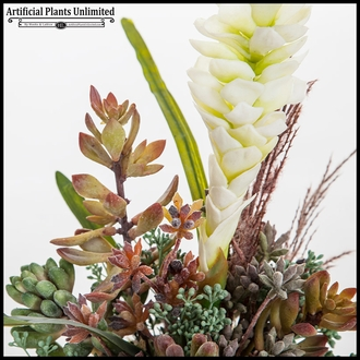 Heliconia with Succulent Western Arrangement