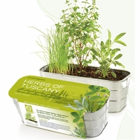 Herbs of Tuscany Herb Kit
