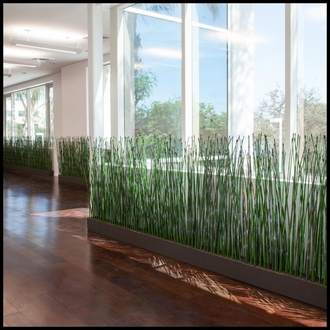 3'H Horsetail Reed by the Square Foot, Indoor