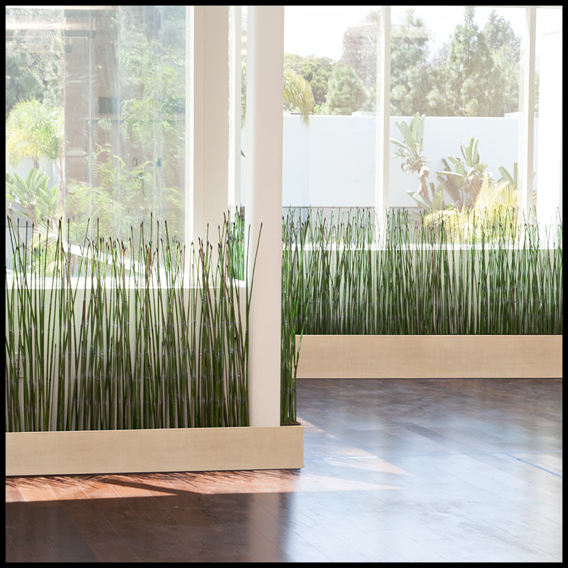 fake horsetail reeds & dividers - artificial plants unlimited 6 Foot Fake Plants