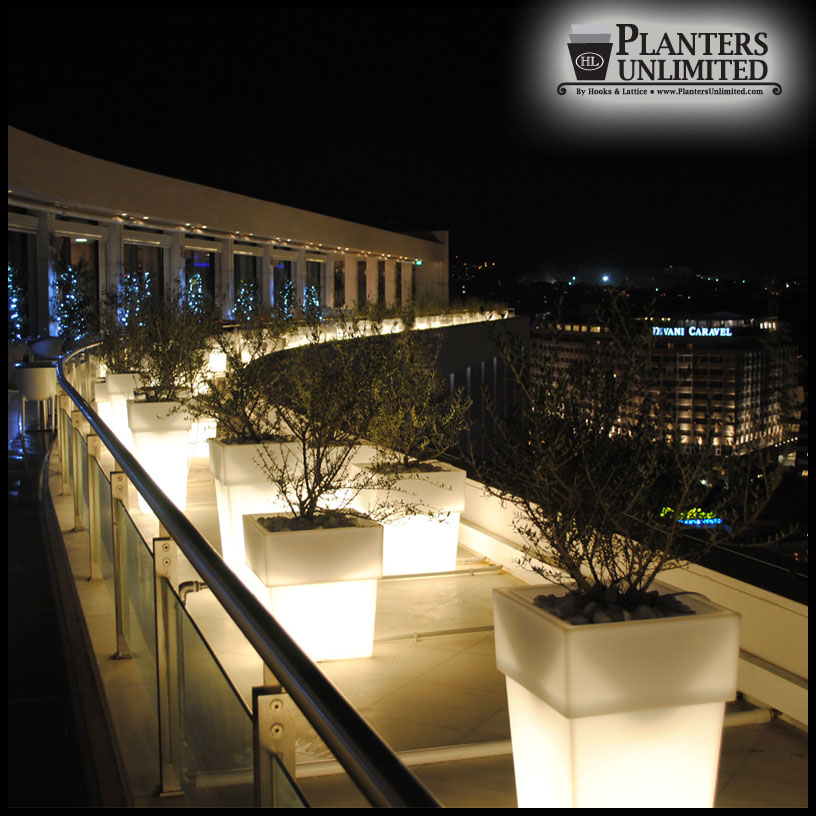 illuminated planters lighted planters. Black Bedroom Furniture Sets. Home Design Ideas