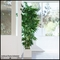 Indoor Artificial Bamboo Clusters