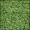 Gypso Grass Indoor Artificial Living Wall 48in.L x 36in.H