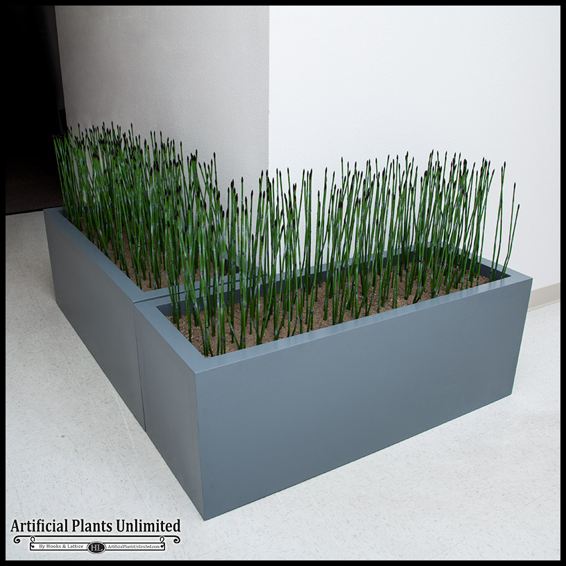 indoor house plant displays html with Artificial Equisetum Reeds on These Are Few Of My Favourite Found likewise House Plants in addition Stock Photo Uk Wales Swansea Plantasia Indoor Tropical Garden Visitors Feeding 43579629 as well A Z List Of House Plants also Plant Tables Living Room Furniture.