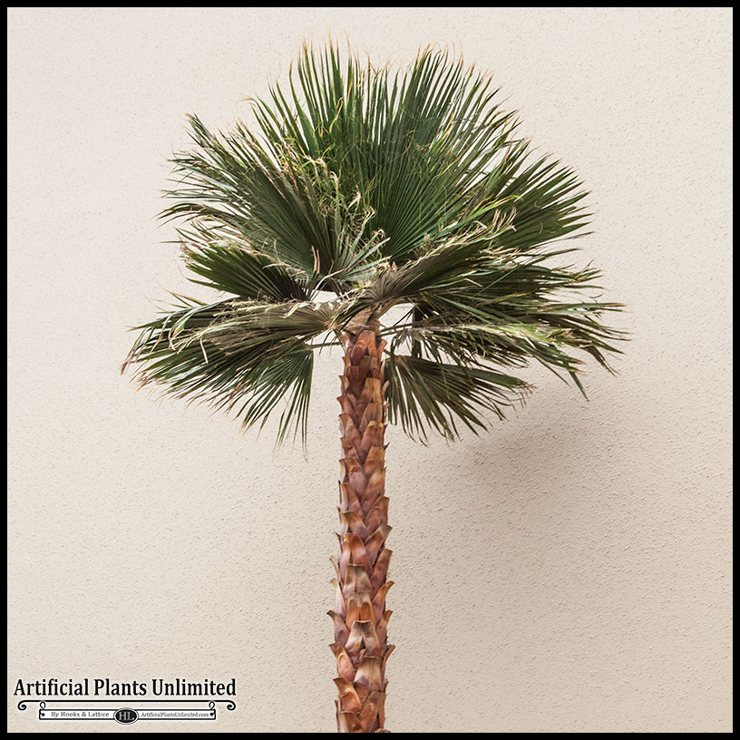 Artificial Palm Trees - Fake Indoor Palm Trees for Home & Office