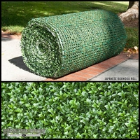 Indoor Japanese Boxwood Rolls