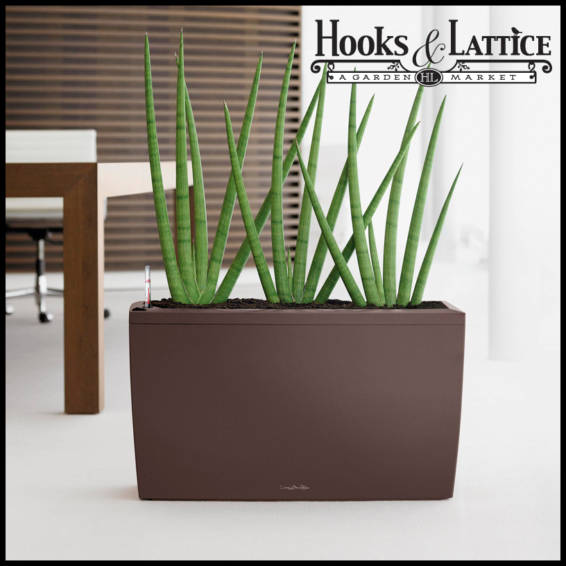 Indoor Planter Box Ideas: Modern Indoor Planters & Self Watering Indoor Planters