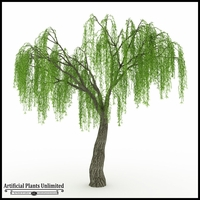 Indoor Rated Willow Tree