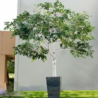 Inherently Fire Retardant Rated Birch Tree
