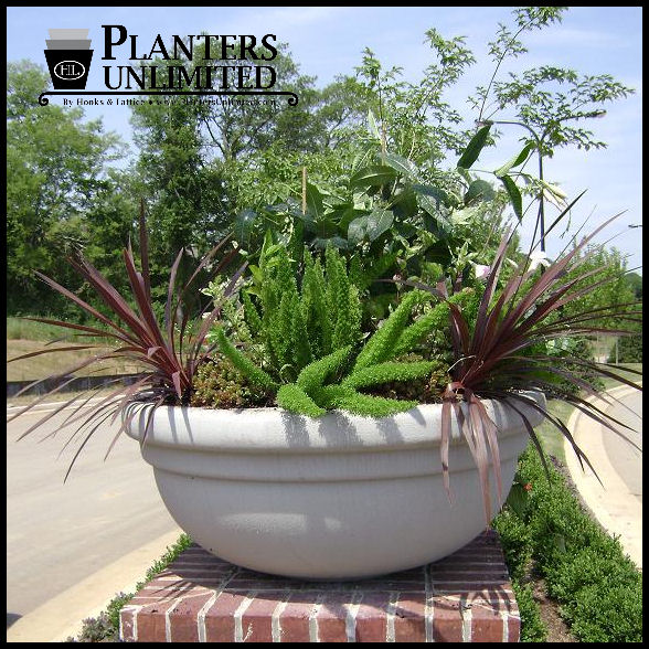 Brand-new Bowl Shaped Large Commercial Fiberglass Planters, Outdoor or Indoor EO09