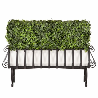 Ivy Hedge in European PVC-Lined Iron Planter