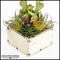 Kalanchoe Cactus Mix in Rustic White Wood Planter 10.5inLx10.5inWx33inH