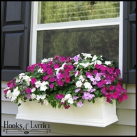 Laguna Self Watering Window Box Planters