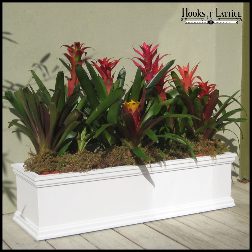 laguna window box planters on casters click to enlarge - Window Box Planters