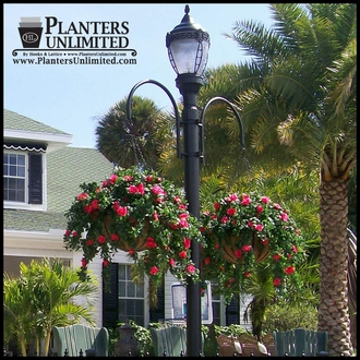 Large Commercial Quot English Garden Quot Hanging Baskets