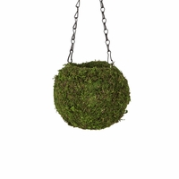 Large Green Kokedama Hanging Planter